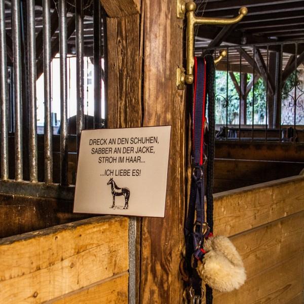 Schild Pferdespruch