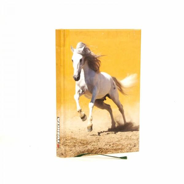 Notizbuch A5 Pferd you will never walk alone