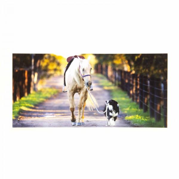 Panoramapostkarte Pferd Hund you will never walk alone